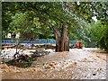 NJ3458 : Fochabers Floods 2009 (1) by Anne Burgess