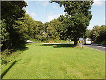 S5309 : Grass verge at realigned road junction, Adamstown by David Hawgood