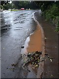 SX9065 : Puddle on Teignmouth Road, Torquay by Derek Harper