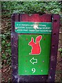 NZ4138 : Direction sign with helpful safety information by Roger Smith