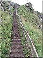 C9544 : The Shepherd's Steps, Giant's Causeway by David Hawgood
