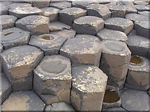 C9444 : Hexagons (mainly) at the Giant's Causeway by David Hawgood