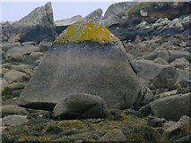 SV9210 : Lichen-zoned Rock, Porth Hellick, Scilly by John Rostron