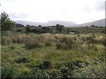G7553 : Balloor Townland by Kenneth  Allen