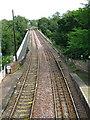 NY4654 : Corby Bridge by David Rogers