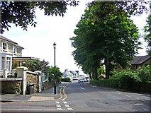SZ5881 : Chine Avenue, Shanklin, Isle of Wight by Christine Matthews