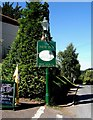 SO7966 : The New Inn pub sign, Shrawley by P L Chadwick