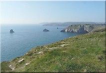 SX9456 : Coastal scenery from Berry Head by John Baker