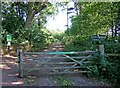 SO8066 : Main entrance to Shrawley Wood by P L Chadwick