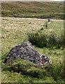SX6366 : Upper Erme stone row by Derek Harper