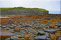 HY2428 : Rock strewn causeway at the Brough of Birsay by C Michael Hogan