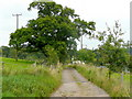 SO5312 : Farm track and footpath by Jonathan Billinger
