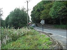 NS7177 : B802 entering Kilsyth by Jim Smillie