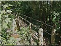 SO8166 : Footbridge over the Dick Brook by P L Chadwick