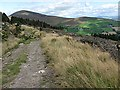 S7941 : Blackstairs Mountain by kevin higgins