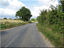 TG3204 : Low Road approaching Rockland St Mary by Evelyn Simak