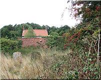 TM3898 : Little Church Farm by Evelyn Simak