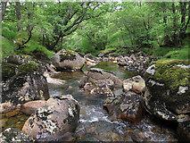 NN0633 : Wooded gorge by Hugh Venables