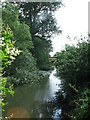 SP7713 : River Thame near to Weir Lodge, Eythrope by Gerald Massey
