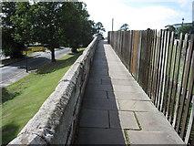 SJ4065 : The city walls towards Grosvenor Road by John S Turner