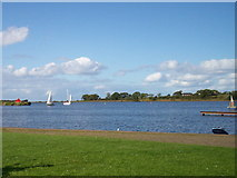 J0561 : Yachts returning to moorings after sailing in Lough Neagh,1 by P Flannagan
