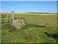 SM9136 : Haymaking near Rhosycaerau by Pauline E