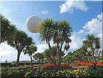 SX9063 : The High Flyer balloon ride Torre Abbey gardens by Steve  Fareham