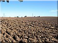 NZ4235 : Ploughed field at Leechmire farm by Roger Smith