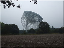 SJ7971 : Jodrell Bank Radio Telescope from Bomish Lane by Glyn Drury