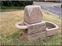 TL7204 : Great Baddow Village Water Trough by Adrian Cable