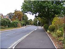 TL7205 : B1009 Baddow Road by Adrian Cable