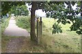 TQ7836 : Footpath junction on the High Weald Landscape Trail by David Anstiss