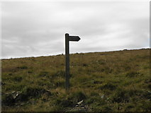 SD9922 : Finger post  for footpath at Cove Hill by Michael Steele