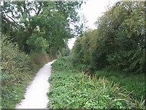 SJ5114 : Shrewsbury Canal by John M