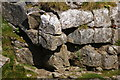 SD9972 : A detail of the north wall of the pot by Ian Greig