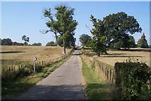 TQ7036 : Driveway to Finchcocks by David Anstiss