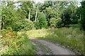 NU0403 : Near Chapel Well by Graham Horn