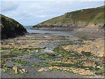 SW9780 : Port Quin Harbour by Philip Halling