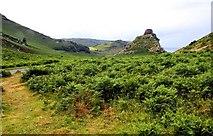 SS7049 : The Valley of Rocks near Lynton by Steve Daniels