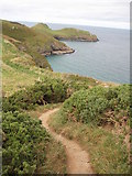 SW9380 : Coast path approaching Rumps Point by Philip Halling