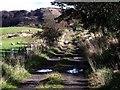 NS7176 : Auchinstarry Farm track by Robert Murray