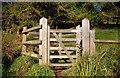 J3370 : The Lagan Meadows walk, Belfast (11) by Albert Bridge