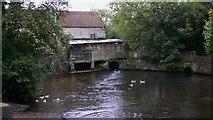 SU8135 : Headley Mill by Shazz