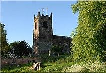 SJ8255 : All Saints Church. Church Lawton by Galatas