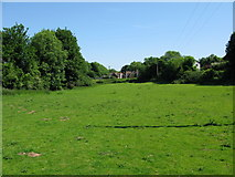 TR2849 : Meadow between Upper and Lower Eythorne by Nick Smith