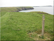 SW9078 : The coast path near the Pepper Hole by Philip Halling