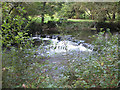 SM9636 : Weir on the Afon Gwaun by Pauline E