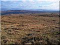 NG2856 : Moorland in Waternish by Richard Dorrell