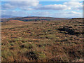 NG2956 : Moorland in Waternish by Richard Dorrell