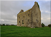 R7028 : Castles of Munster: Ballynahinch, Limerick (2) by Mike Searle